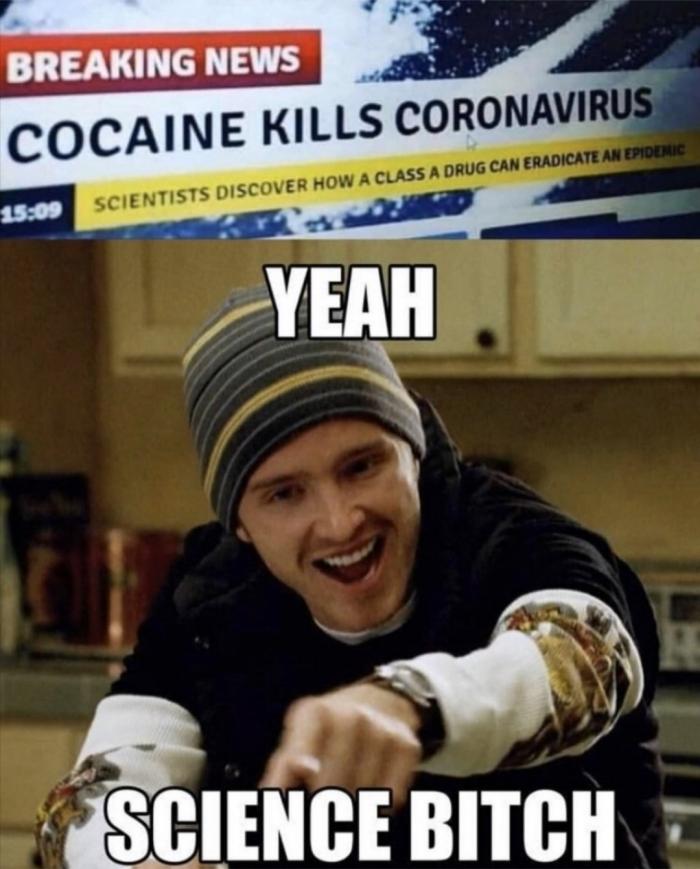 coronavirus-40